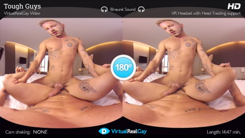 Virtual reality gay porn